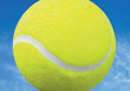 ying tennis yang