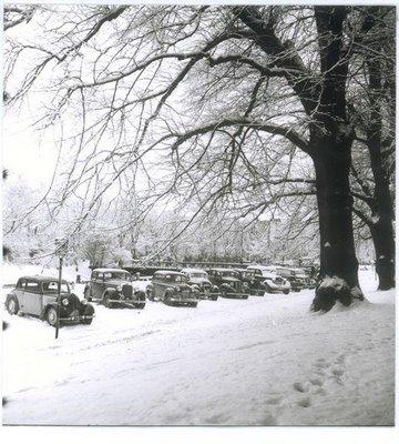Göteborg Slottskogen